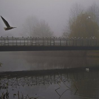 Brug over het Valleikanaal in de mist